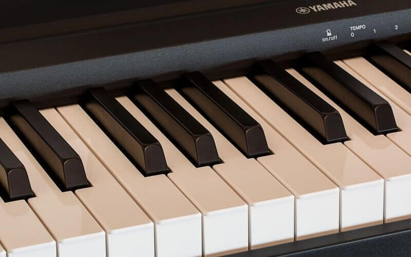 Kawai vs  Yamaha Digital Piano: Finding the Clear Winner